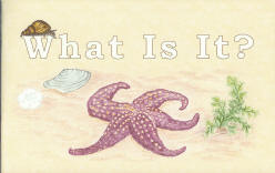 "What Is It? - ""God's Creation"" Coloring Book"