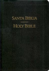 Reina-Valera Spanish Santa Biblia / KJV English Holy Bible - Parallel (bonded leather)