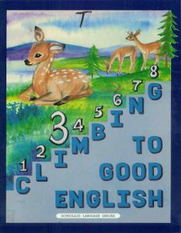 Grade 3 Climbing to Good English - Teacher's Edition