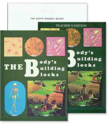 Grades 5-6 Health - The Body's Building Blocks - Set