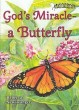 God's Miracle—a Butterfly