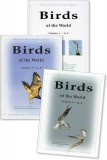 Birds of the World - Set of 3